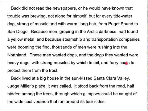 a paragraph about reading