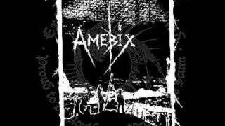 Extinction of Mankind - Sunshine Ward (Amebix cover)