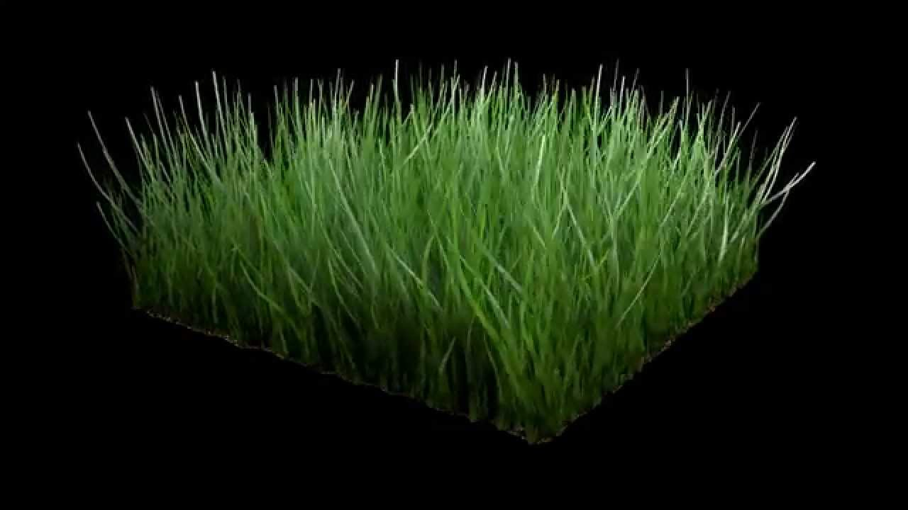 Cinema 4D - Realistic Grass With Wind