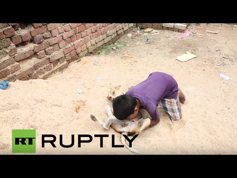India: Meet Mohit, the 10-yr-old boy who feeds on dog milk from YouTube · Duration:  2 minutes 14 seconds