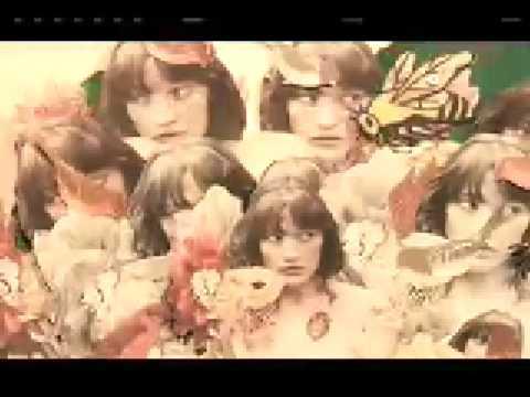 Blitzen Trapper - Furr [OFFICIAL VIDEO]