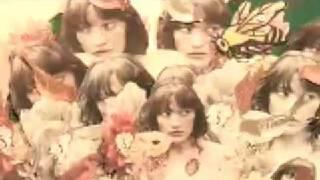 Blitzen Trapper - Furr [OFFICIAL VIDEO] chords | Guitaa.com