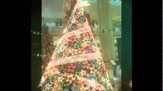 The  CHRISTMAS Song   David Benoit