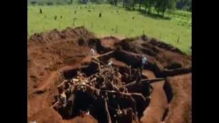 ★ Giant Ant Colony Excavated ★ thumbnail