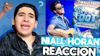 Baixar Niall Horan - Finally Free | REACCIÓN