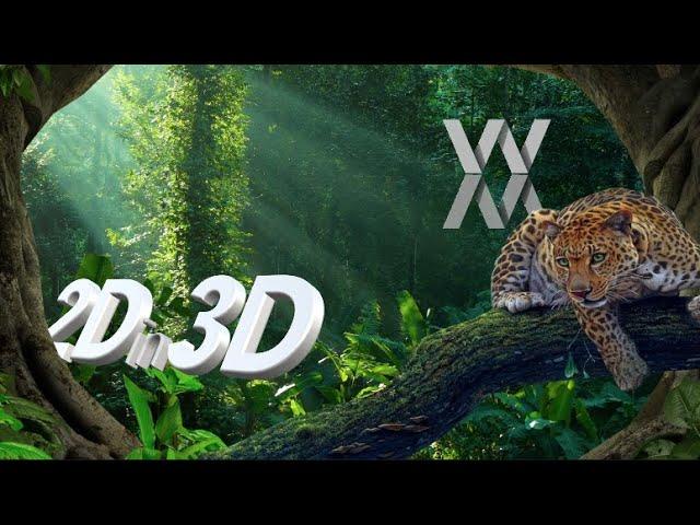 2D in 3D Transformer
