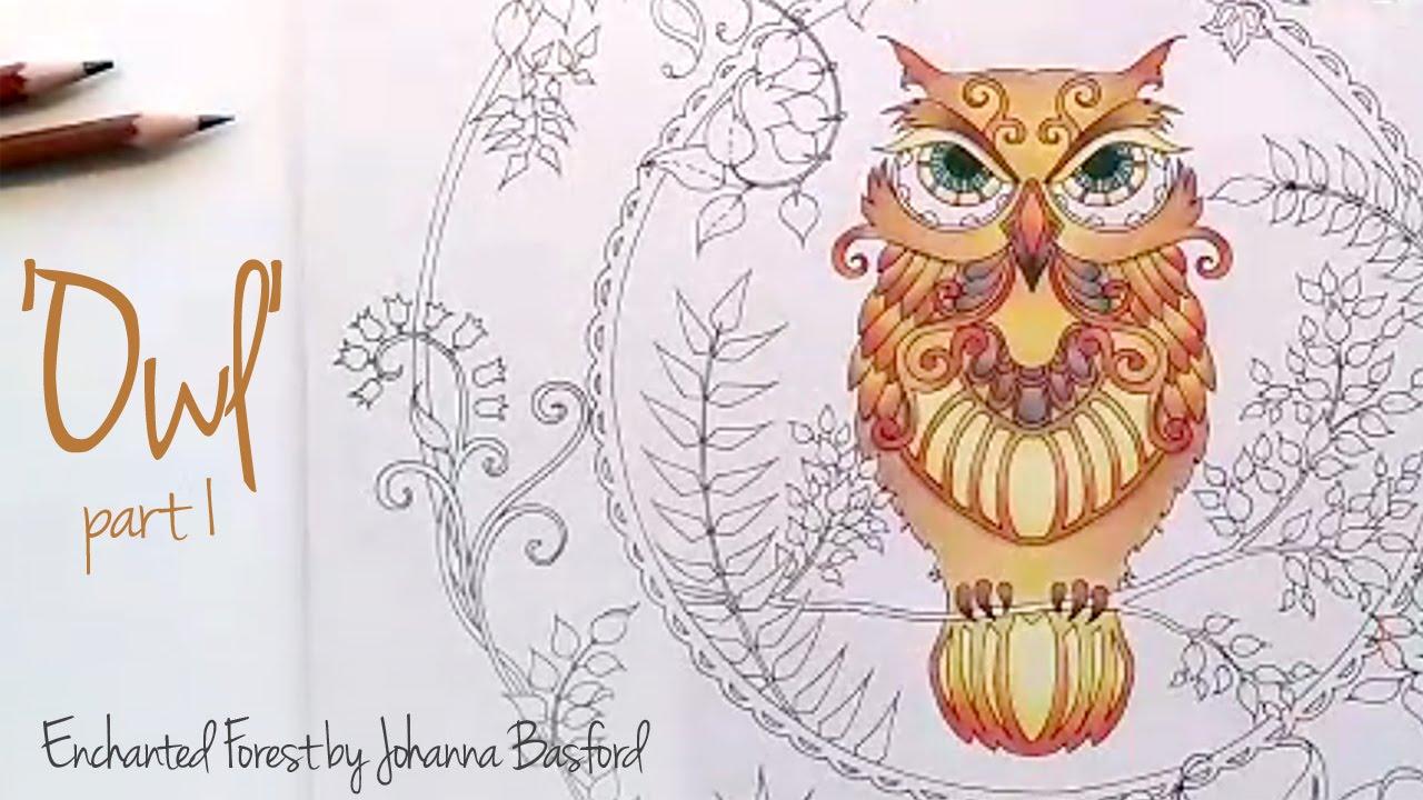 enchanted forest coloring pages owl - photo#20