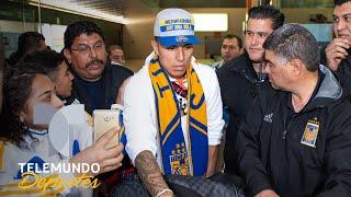 Salcedo vuelve a Tigres como hijo pródigo | Telemundo Deportes