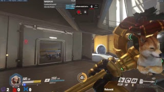 Overwatch live stream gaming video pc 2018