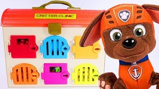 Critter Clinic | Peppa, Paw Patrol and Surprise Toys | Amy Jo DCTC School