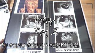 임산부 vlog  임당검사,집들이,댕댕이,초음파사진,임…
