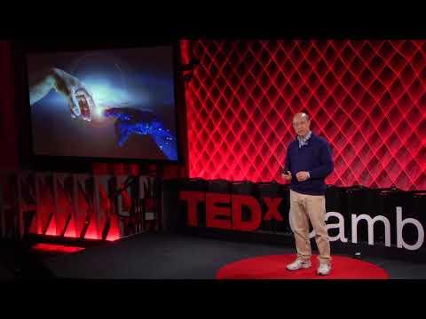 Hacking Humanity | Andrew Lo | TEDxCambridgeSalon