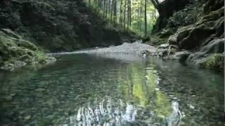 River running through Akigawa Valley   Aug 9 2011