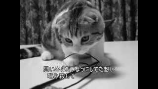 森恵さんの曲をvocaloidのMeguさんにゆるく歌ってもらいました。Live Ve...