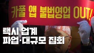'카풀 반대' 오늘 하루 택시 파업·10만 명 국회 앞 집회 / YTN