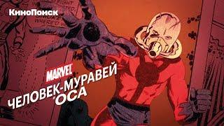 Кто такие Человек-муравей и Оса?