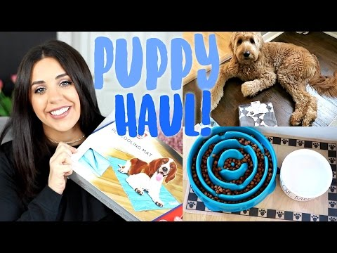 PUPPY HAUL! MY GOLDENDOODLE PUPPY! TJMAXX PET FINDS!