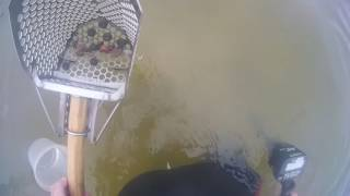 One more Waterhunt? Short hunt, Short video, a cool find!