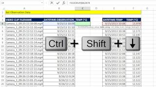 Excel Magic Trick 1191: VLOOKUP: Lookup Temperature and Return to Bat Observation Table