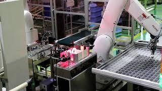 多軸ロボットによるインサート成形と画像自動検査装置