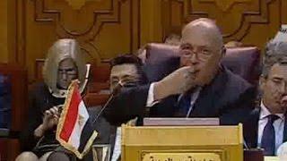 شاهد.. أمين جامعة الدول: نواجه تحديات تهدد دولًا ومجتمعات عربية بأكملها