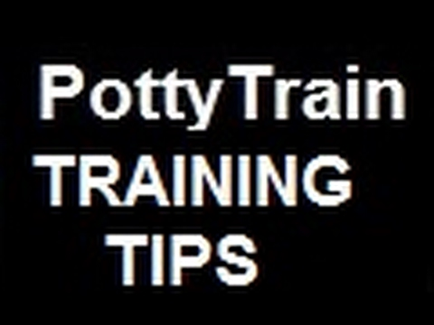 """*""HOW  TO  POTTY  TRAIN a YORKIE""-""Yorkie Puppy & the Smallest Rookies Training Potty  Litter Box"""