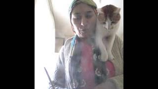 mecnun kedinin yemeği hazırlanıyor