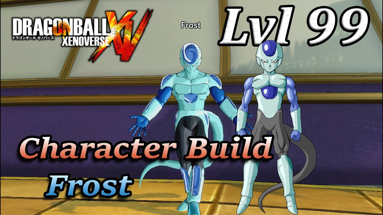 Xenoverse  Character Builds