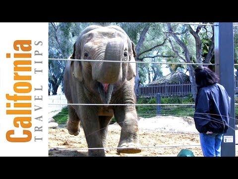 Santa Barbara Zoo - Santa Barbara Attractions - Things to Do in Santa Barbara