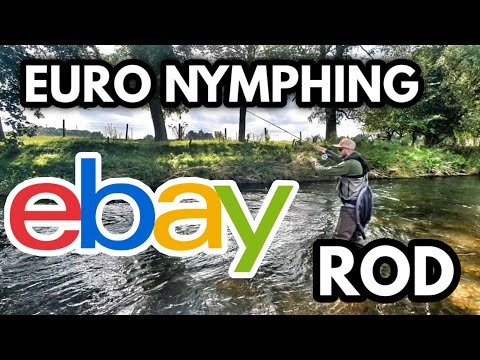 WORLD'S CHEAPEST Euro Nymph Rod? EBay Bargain French Leader Fly Rod Review