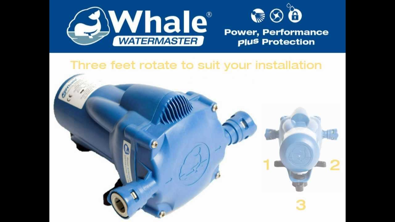 New Whale Watermaster Automatic Pressure Pump - YouTube