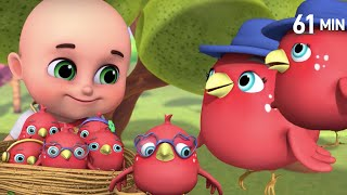 Five Little Birds | Let's Learn The Numbers!  | +More Nursery Rhymes & Kids Songs - Jugnu Kids