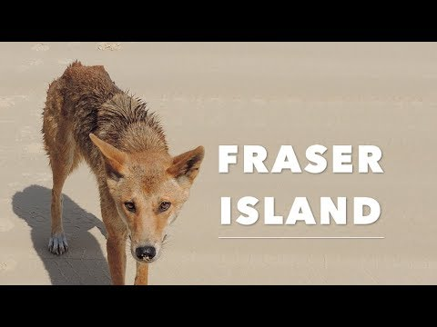 TOP 10 Things to do on Fraser Island! | JustBecause