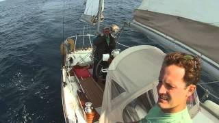 Pelagic Sailboat Offshore Sailing 8-4-14