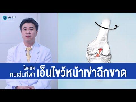 เอ็นไขว้หน้าเข่าฉีกขาด (ACL) โรคฮิตนักกีฬา | พบหมอมหิดล [by Mahidol Channel]
