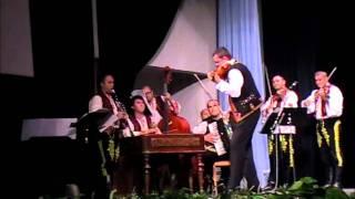 Mykhaylo Zakhariya - Toni Iordache - Variatiuni pe tema Foaie verde si - o craita (5)