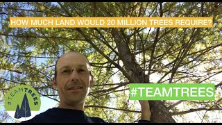 How much land for 20 million trees?