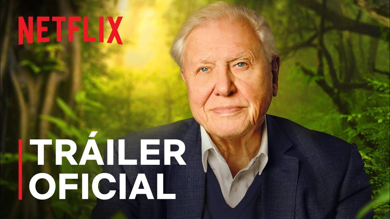 David Attenborough Una Vida En Nuestro Planeta Tráiler Oficial Netflix Youtube