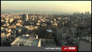 پیدا شدن حیوانات وحشی در خیابان های تهران