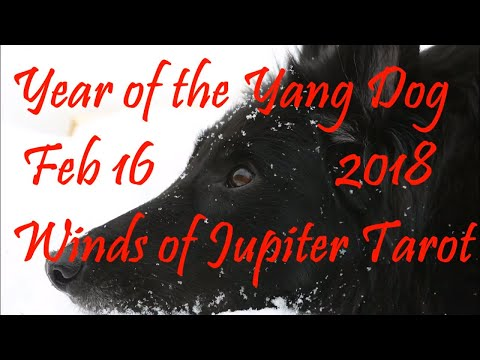 Dog 2018 Chinese New Year Reading - Born 1946, 1958, 1970, 1982, 1994, 2006, 2018 – Virtue & Peace