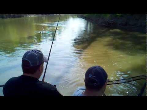 Monster Catfish Red River Fargo, ND