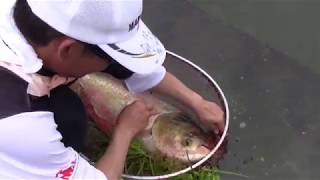 видео Рыбалка в Японии