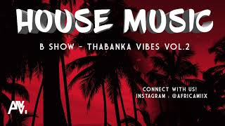 B Show Thabanka Vibes Vol 2 - BEST OF FUTURE HOUSE & DEEP HOUSE MIX 2019 1 Hour of Afro House Music