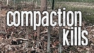 Compaction Kills - Straight to the Point