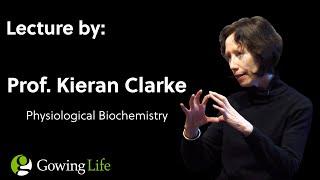 Kieran Clarke  |   On Development & Use of a Ketone Ester Drink