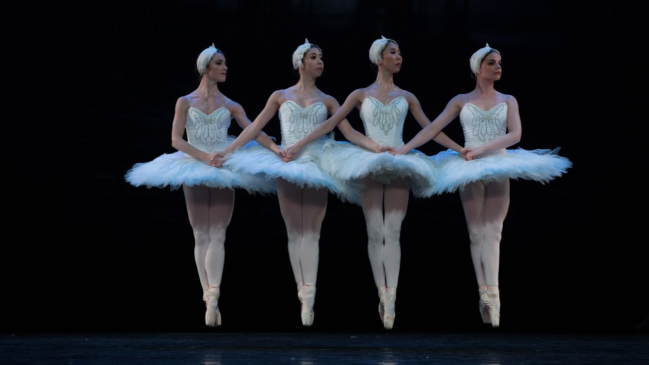 Queensland Ballet's Swan Lake - Swans - YouTube
