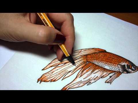 АС Пушкин Сказка о рыбаке и рыбке