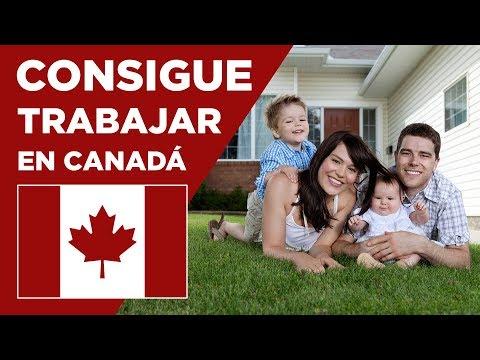 Permiso de trabajo en Canadá. Cómo conseguirlo.