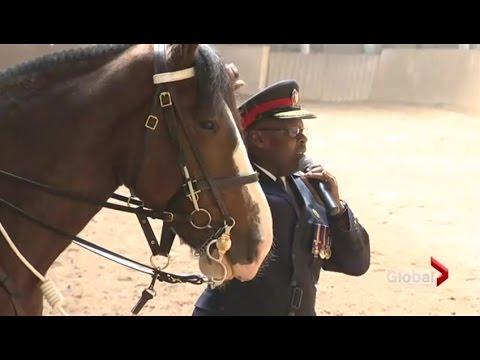 Toronto police horse named in honour of slain Sgt. Ryan Russell