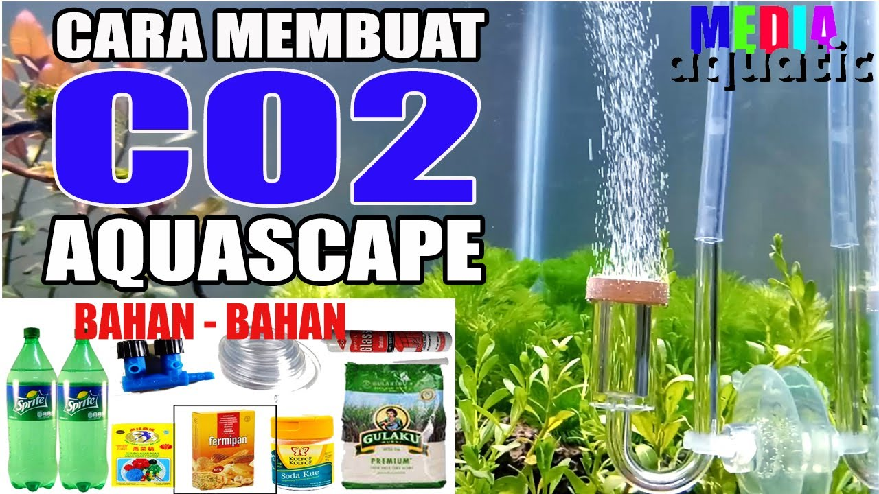 Membuat CO2 Aquascape - YouTube